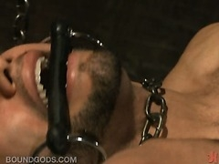 In this week's dungeon scene with horny guys fucking