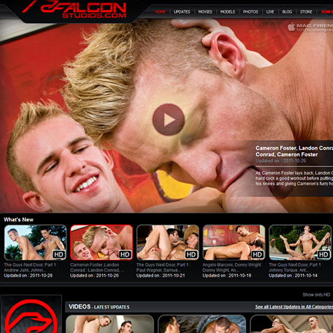 Click to enlarge Falcon Studios screenshot